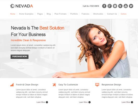 nevada theme wordpress