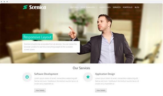 scenica theme wordpress